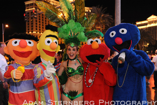 The pot-smoking showgirl hangs out with Ernie, Bert, Elmo, and the Cookie Monster. This Sesame Street posse can be seen frequently walking together on Las Vegas Blvd. Because of their fun nature, they tend to have lots of picture requests.
